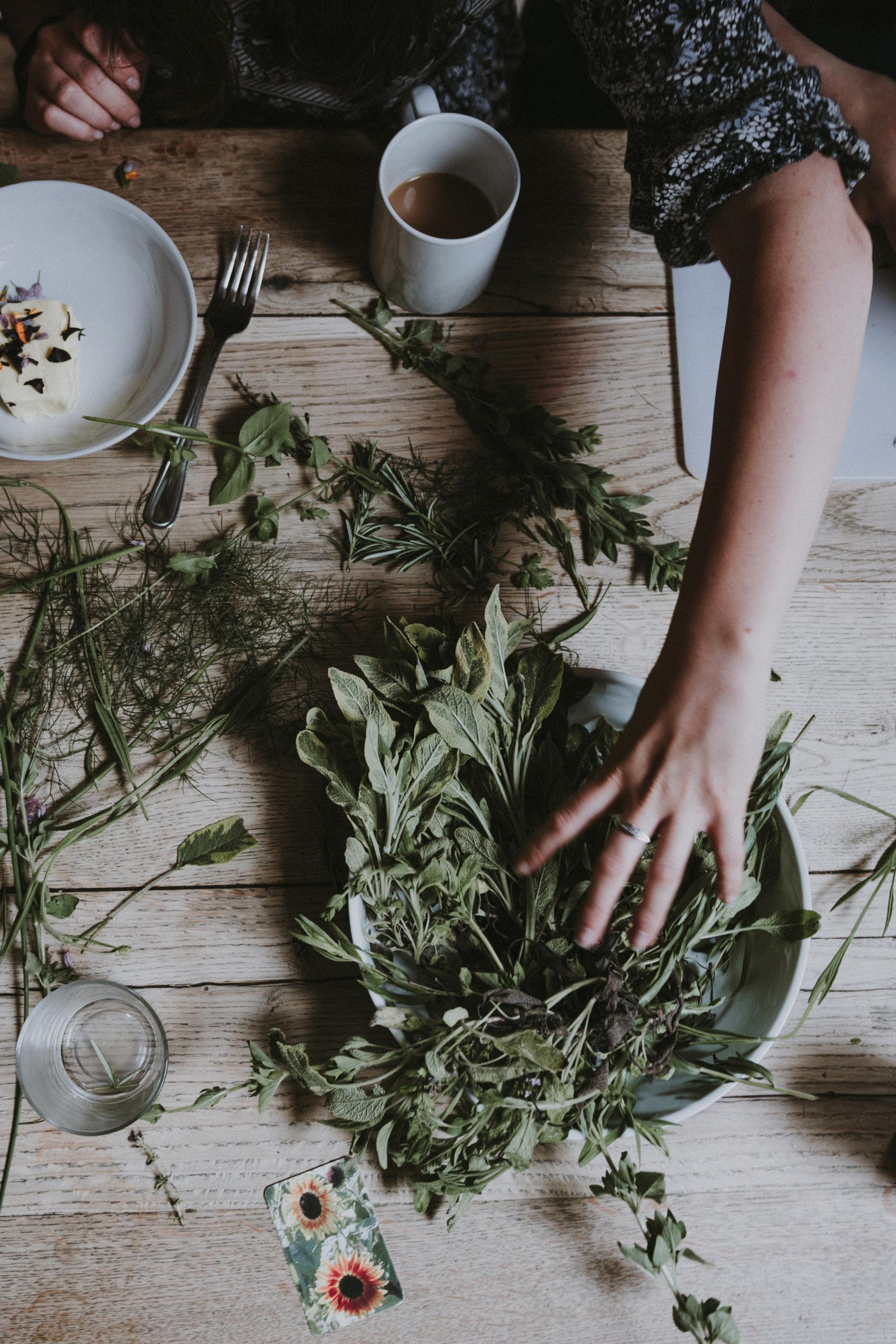 Was richtig Wildes in der Küche: Wildkräuter